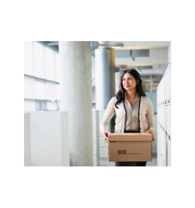 Caja para archivar 385x115x270